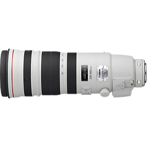 Canon EF 200-400mm f4 L IS USM with 1.4x Extender