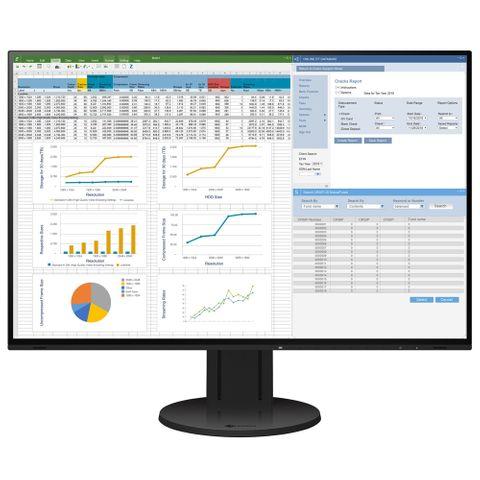 Eizo Flexscan EV2457 Black 24 Inch LCD Monitor