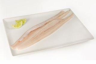 FISH FLATHEAD IQF 5KG