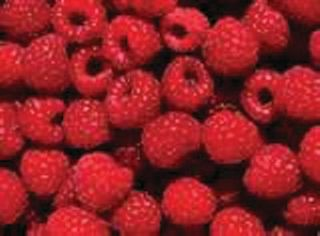 RASPBERRIES 1KG (12) SIMPED