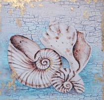 SHELL & CORAL DECOR