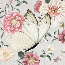 Canvas 20x20 Vintage Floral BUTTERFLY