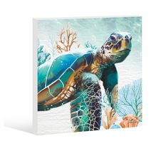Stretched Canvas 45x45 Green Turtle GREEN 1