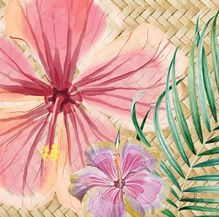 Canvas 20x20 Hibiscus