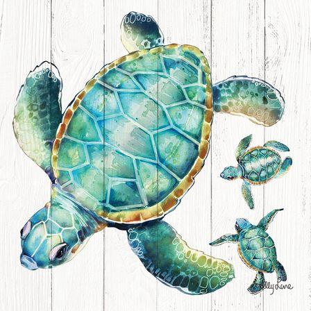 Canvas 20x20 Turtles