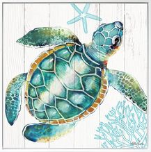 Shadow Framed Painting 40x40 Turtles