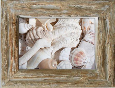 Photo Frame Coral 19x24 6x4