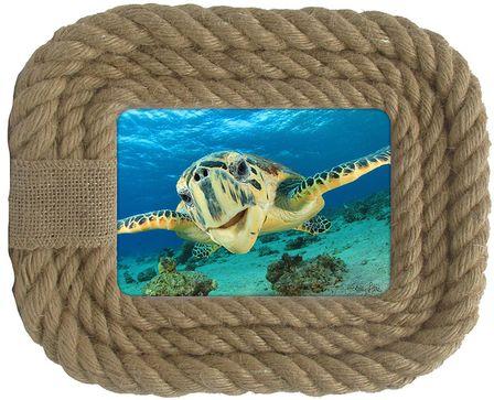Photo Frame Turtles 23x28 5x7