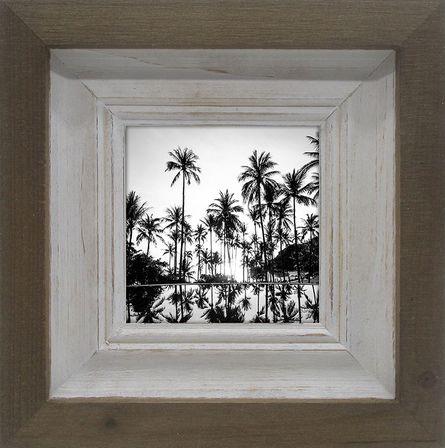 Photo Fram Palm 20x20 4x4