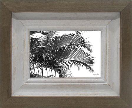 Photo Frame Palm 20x25 6x4