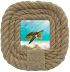 Photo Frame Turtles 4x4