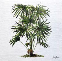 Painting 20x20 Plantation FAN PALM