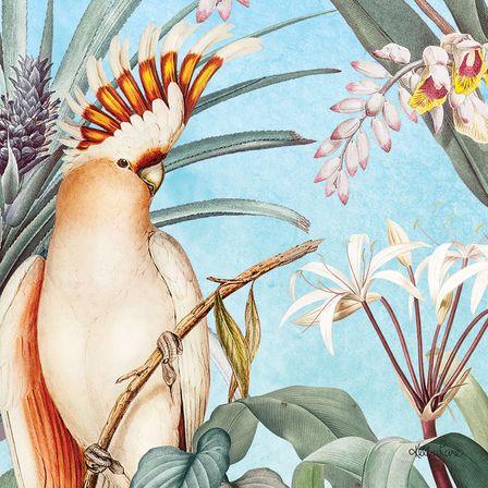 Canvas 20x20 Parrots BLUE