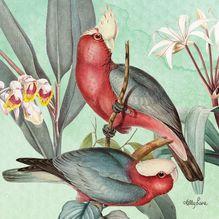 Canvas 20x20 Parrots GREEN