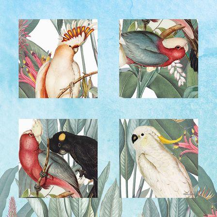 Painting 55x55 Collage Parrots BLUE