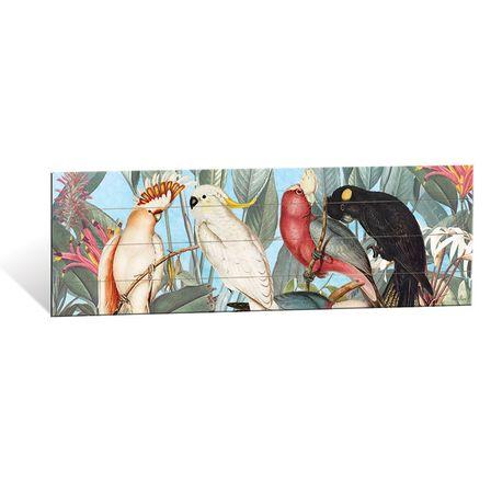 Wall Art 40x120 Parrots