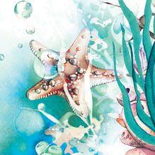 Canvas 20x20 Sea Turtle STARFISH