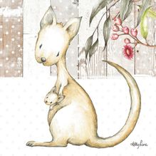Canvas 20x20 Baby Joeys KANGAROO