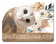 Placemat S/6 29x21.5cm Barn Owl DREAM
