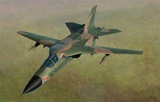 Hobbyboss 1:48 F-111D/E Aardvark