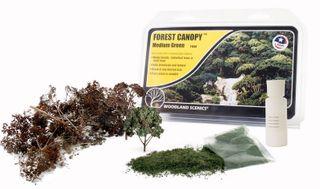 MEDIUM GREEN FOREST CANOPY