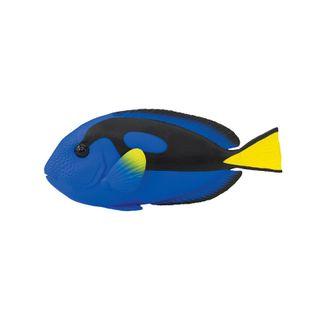 Safari Ltd Blue Tang