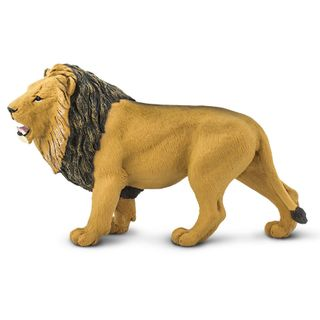 LION, WILDLIFE WONDERS