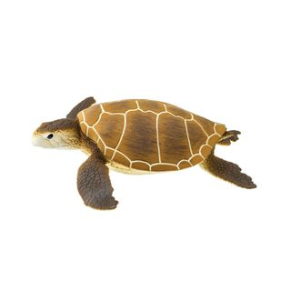 Safari Ltd Green Sea Turtle Wild SafariSea Life
