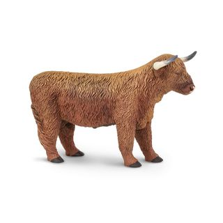 HIGHLAND BULL, SAFARI FARM *D