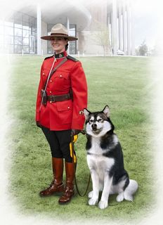 ICM 1:16 RCmp Female Officer W/ Dog