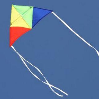 Toys Kite Windspeed Junior Delta Kite