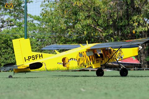 VQ Models Pilatus PC6 Porter EP GP Tiger