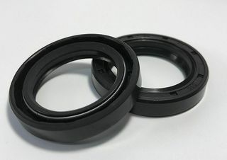 OIL SEAL METRIC DOUBLE LIPPED 65X80X10DLR