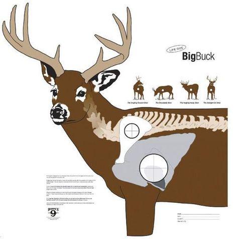 BIG BUCK TARGET 28INX28