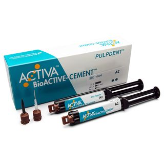 ACTIVA BIOACTIVE CEMENT A2