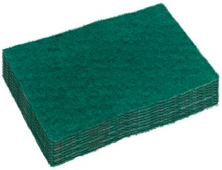 GREEN SCOUR SML 15X10CM PK10 SC100