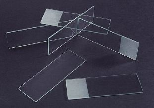Microscope Slide Single Frosted 1mm Thick 90 degree Ground Edge with Clipped Corners (50/Pack)