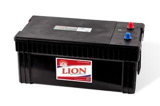 LION BATTERY (N200)