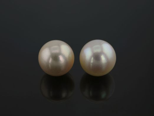 Akoya Pearl Cream 7.5-8mm (C)