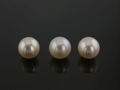 Akoya Pearl Light Cream 5.5-6mm (C)