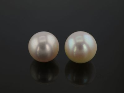 Akoya Pearl Light Cream 8-8.5mm (C)