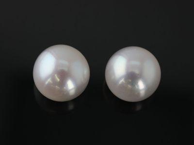 Fresh Water Pearl White Button 8-8.5mm Round H/D (C)