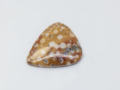 Brown Spotted Jasper 27x14mm Triangular Cabochon (N)
