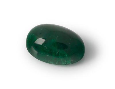Emerald 10.35x7.05mm Oval Cabochon (E)