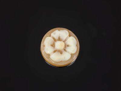 Cameo Italian Shell Flower 10mm Round (N)