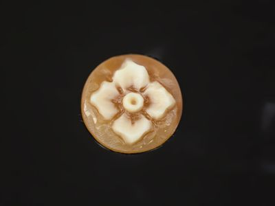 Cameo Italian Shell Flower 12mm Round (N)
