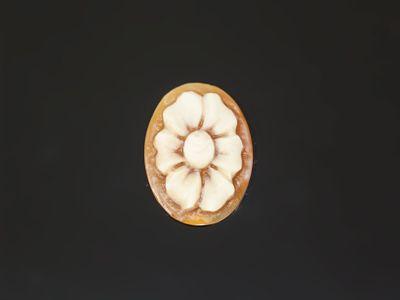 Cameo Italian Shell Flower 20x15mm Oval (N)