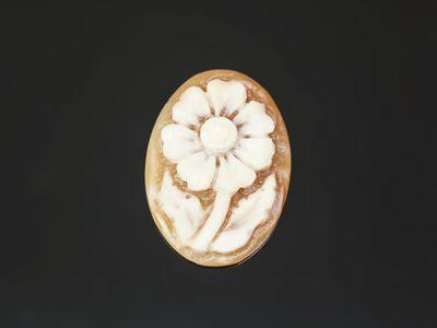 Cameo Italian Shell Flower 25x18mm Oval (N)