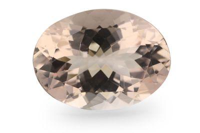 Morganite 15.8x11.6mm Oval (T)