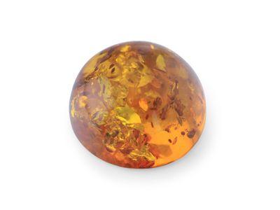 Amber 16mm Cabochon Round (E)